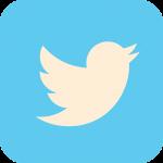 twitter, social media, icon